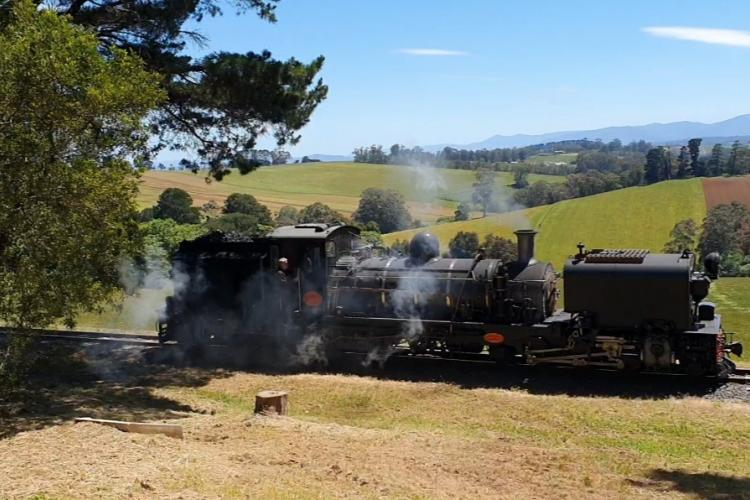 Puffing Billy going past